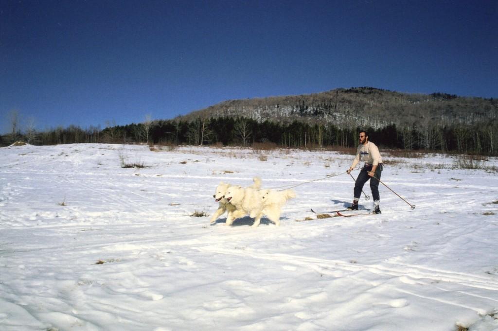 ski-jorning